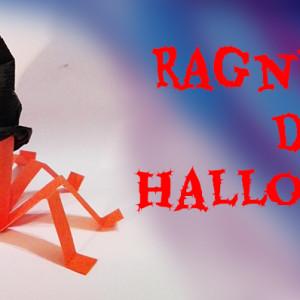 Halloween – il ragnetto con cappello a cono