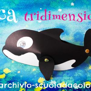 Orca tridimensionale